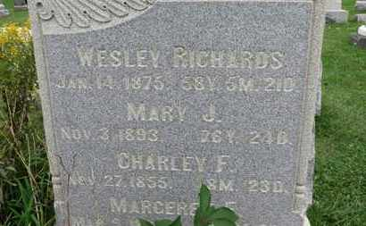 RICHARDS, MARY J. - Ashland County, Ohio | MARY J. RICHARDS - Ohio Gravestone Photos