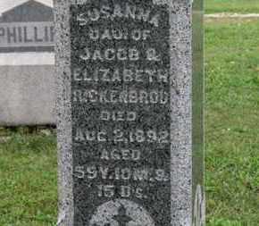 RICKENBROD, SUSANNA - Ashland County, Ohio | SUSANNA RICKENBROD - Ohio Gravestone Photos