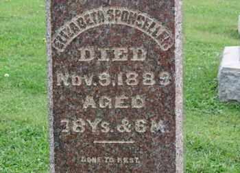 SPONSELLER, ELIZABETH - Ashland County, Ohio | ELIZABETH SPONSELLER - Ohio Gravestone Photos