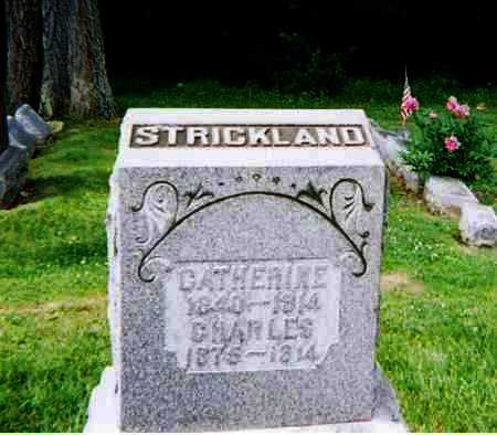 STRICKLAND, CATHERINE - Ashland County, Ohio | CATHERINE STRICKLAND - Ohio Gravestone Photos