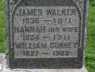 CURREY, WILLIAM - Ashland County, Ohio | WILLIAM CURREY - Ohio Gravestone Photos
