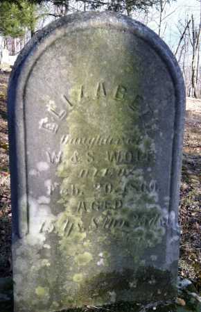 WOLFE, ELIZABETH - Ashland County, Ohio | ELIZABETH WOLFE - Ohio Gravestone Photos
