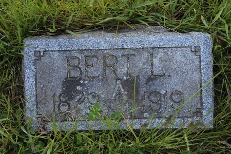 HARVEY, BERT L. - Ashtabula County, Ohio | BERT L. HARVEY - Ohio Gravestone Photos