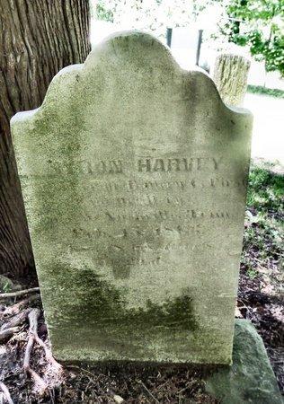 HARVEY, BYRON - Ashtabula County, Ohio | BYRON HARVEY - Ohio Gravestone Photos