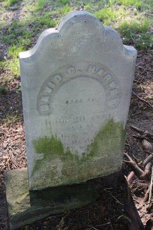 HARVEY, DAVID - Ashtabula County, Ohio | DAVID HARVEY - Ohio Gravestone Photos