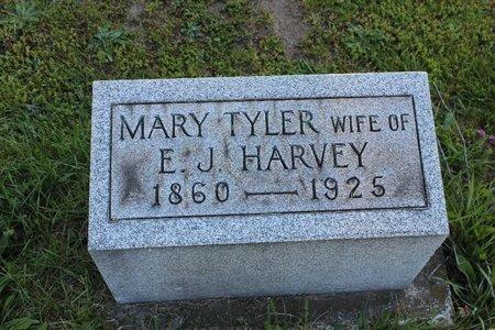 HARVEY, MARY - Ashtabula County, Ohio   MARY HARVEY - Ohio Gravestone Photos