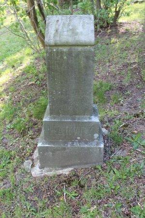 HARVEY, ORRIN LEONARD - Ashtabula County, Ohio | ORRIN LEONARD HARVEY - Ohio Gravestone Photos