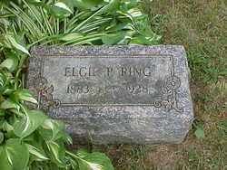 RING, ELGIE PAULINE - Ashtabula County, Ohio | ELGIE PAULINE RING - Ohio Gravestone Photos