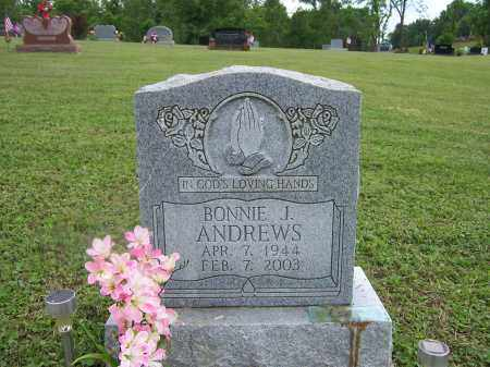 GLENN ANDREWS, BONNIE J. - Athens County, Ohio | BONNIE J. GLENN ANDREWS - Ohio Gravestone Photos