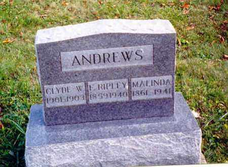 ANDREWS, F. RIPLEY - Athens County, Ohio | F. RIPLEY ANDREWS - Ohio Gravestone Photos