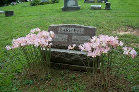 DAILY BARTLETT, JANE - Athens County, Ohio | JANE DAILY BARTLETT - Ohio Gravestone Photos