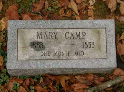 CAMP, MARY - Athens County, Ohio | MARY CAMP - Ohio Gravestone Photos