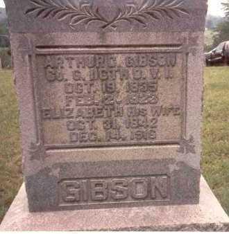 TEWKSBURY GIBSON, ELIZABETH - Athens County, Ohio | ELIZABETH TEWKSBURY GIBSON - Ohio Gravestone Photos
