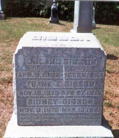 GIBSON, ORLAND - Athens County, Ohio | ORLAND GIBSON - Ohio Gravestone Photos