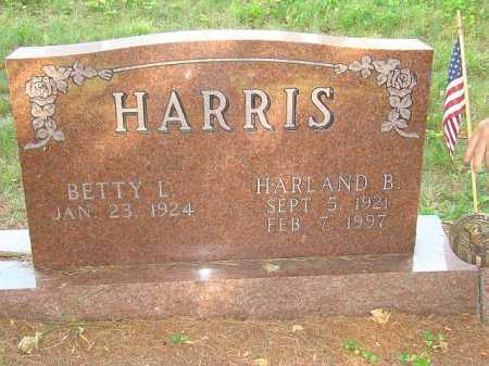 HARRIS, HARLAND B. - Athens County, Ohio | HARLAND B. HARRIS - Ohio Gravestone Photos