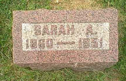 HITCHINGS, SARAH ANN - Athens County, Ohio | SARAH ANN HITCHINGS - Ohio Gravestone Photos