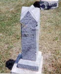 LINSCOTT, LUCY - Athens County, Ohio | LUCY LINSCOTT - Ohio Gravestone Photos
