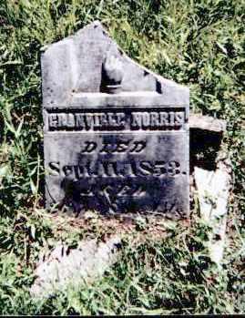 NORRIS, GRANVILLE - Athens County, Ohio | GRANVILLE NORRIS - Ohio Gravestone Photos
