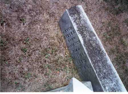REEVES, DAVID - Athens County, Ohio | DAVID REEVES - Ohio Gravestone Photos