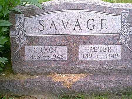 SAVAGE, PETER - Athens County, Ohio | PETER SAVAGE - Ohio Gravestone Photos