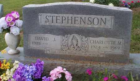 STEPHENSON, DAVID J. - Athens County, Ohio | DAVID J. STEPHENSON - Ohio Gravestone Photos