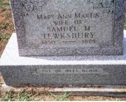 MARTIN TEWKSBURY, MARY ANN - Athens County, Ohio | MARY ANN MARTIN TEWKSBURY - Ohio Gravestone Photos