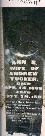 TRICKEY TUCKER, ANN E. - Athens County, Ohio | ANN E. TRICKEY TUCKER - Ohio Gravestone Photos
