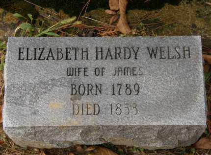 HARDY WELSH, ELIZABETH - Athens County, Ohio | ELIZABETH HARDY WELSH - Ohio Gravestone Photos