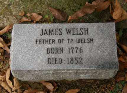 WELSH, JAMES - Athens County, Ohio | JAMES WELSH - Ohio Gravestone Photos