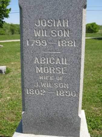 WILSON, JOSIAH - Athens County, Ohio | JOSIAH WILSON - Ohio Gravestone Photos