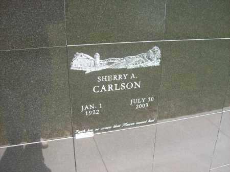 CARLSON, SHERRY A. - Auglaize County, Ohio | SHERRY A. CARLSON - Ohio Gravestone Photos