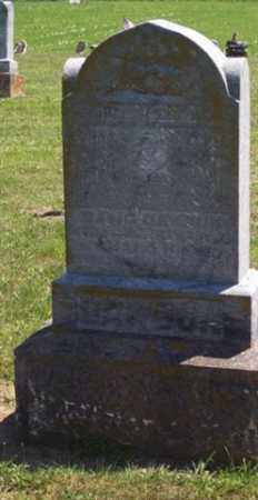 DAWSON, DAVID - Auglaize County, Ohio | DAVID DAWSON - Ohio Gravestone Photos