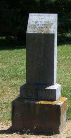 GRAY, CLEMENT - Auglaize County, Ohio | CLEMENT GRAY - Ohio Gravestone Photos