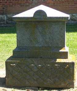 HINEMAN, JANE VICTORA - Auglaize County, Ohio | JANE VICTORA HINEMAN - Ohio Gravestone Photos