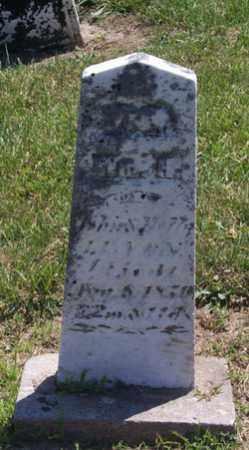 LENOX, WILLIAM - Auglaize County, Ohio | WILLIAM LENOX - Ohio Gravestone Photos