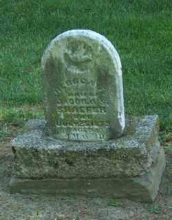 SCHAEFER, REBECCA - Auglaize County, Ohio | REBECCA SCHAEFER - Ohio Gravestone Photos