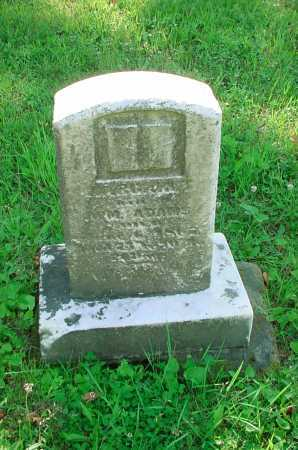 ADAMS, WILLIAM - Belmont County, Ohio   WILLIAM ADAMS - Ohio Gravestone Photos