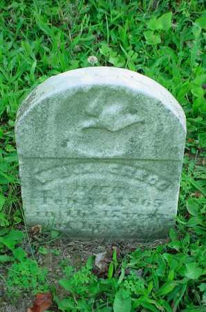 GREGG, W - Belmont County, Ohio | W GREGG - Ohio Gravestone Photos