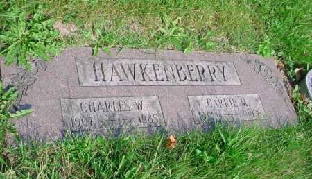 HAWKENBERRY, CARRIE M. - Belmont County, Ohio | CARRIE M. HAWKENBERRY - Ohio Gravestone Photos