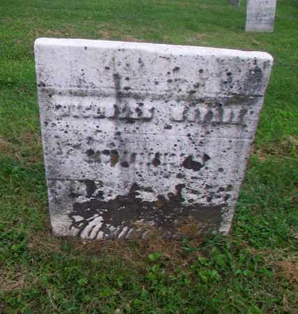 MONROE, NICHOLAS - Belmont County, Ohio | NICHOLAS MONROE - Ohio Gravestone Photos