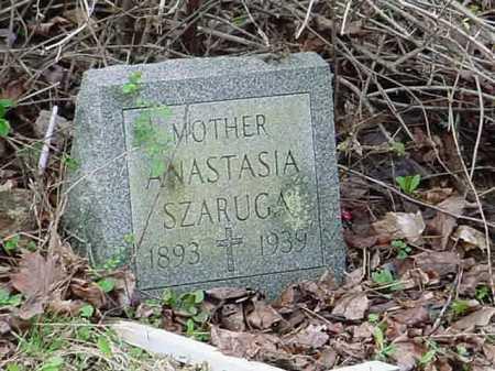 SZARUGA, ANASTASIA - Belmont County, Ohio | ANASTASIA SZARUGA - Ohio Gravestone Photos