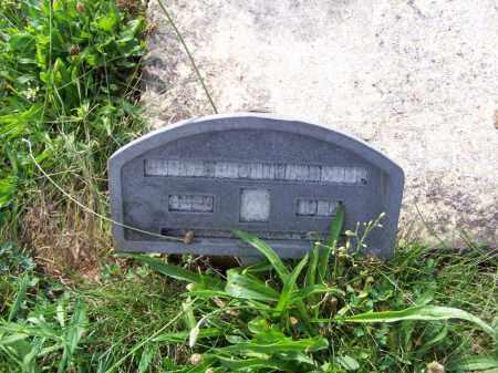 TRAVIS, MARY - Belmont County, Ohio | MARY TRAVIS - Ohio Gravestone Photos