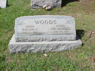 WOODS, WILLIAM ADAM - Belmont County, Ohio | WILLIAM ADAM WOODS - Ohio Gravestone Photos