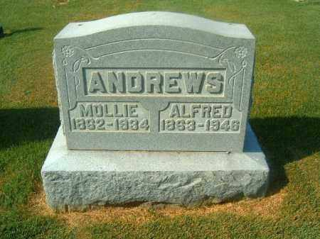 ANDREWS, ALFRED - Brown County, Ohio | ALFRED ANDREWS - Ohio Gravestone Photos