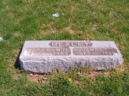 BEALEY, MARY - Brown County, Ohio | MARY BEALEY - Ohio Gravestone Photos