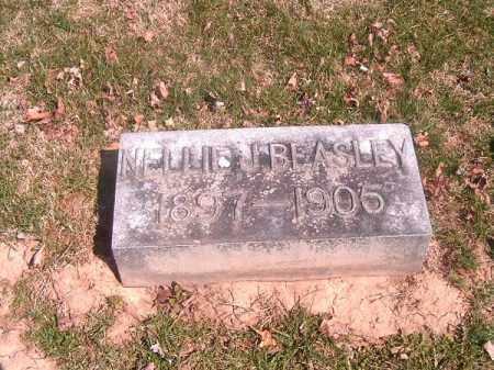 BEASLEY, NELLIE   J - Brown County, Ohio | NELLIE   J BEASLEY - Ohio Gravestone Photos