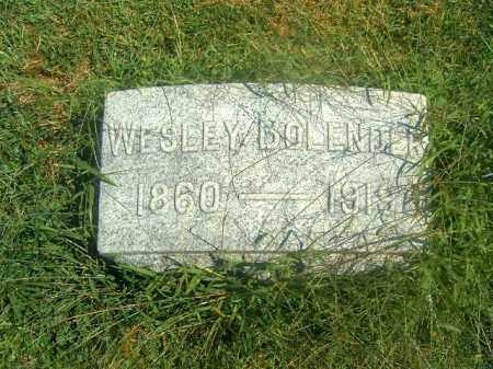 BOLENDER, WESLEY - Brown County, Ohio | WESLEY BOLENDER - Ohio Gravestone Photos