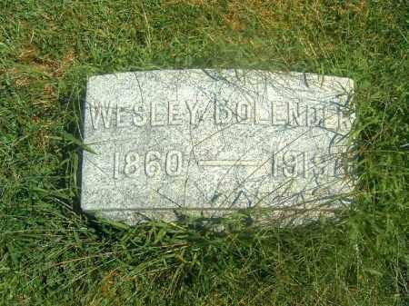 BOLENDER, WESLEY - Brown County, Ohio   WESLEY BOLENDER - Ohio Gravestone Photos