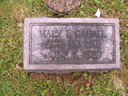 CAHALL, MARY  L - Brown County, Ohio | MARY  L CAHALL - Ohio Gravestone Photos