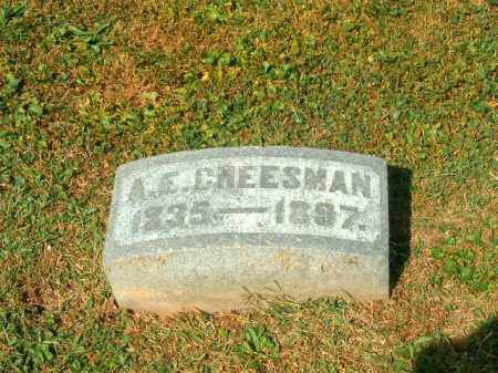 CHESSMAN, A E - Brown County, Ohio | A E CHESSMAN - Ohio Gravestone Photos